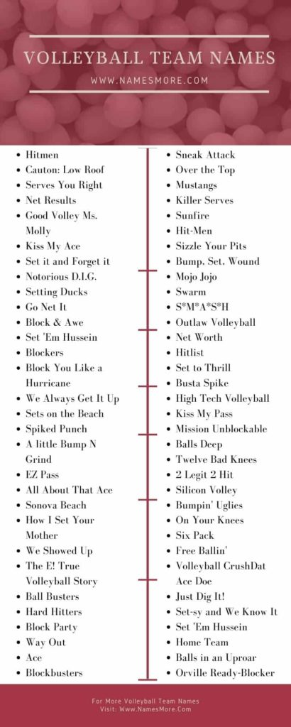 Volleyball Team Names Infographic