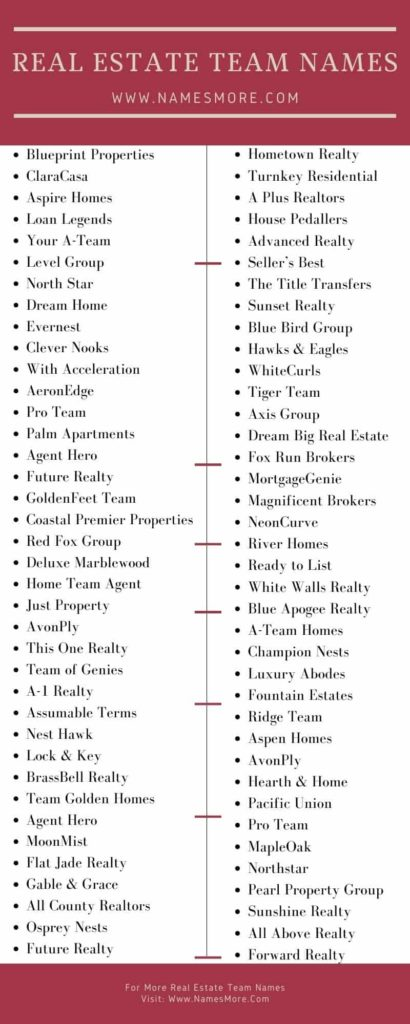 Real Estate Team Names Infographic