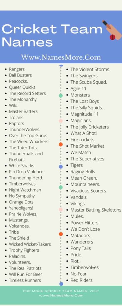 Cricket Team Names Infographic