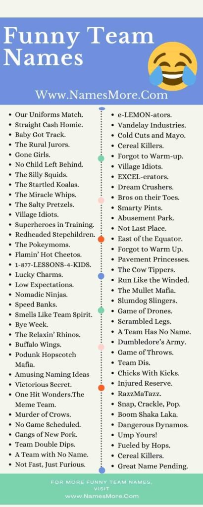 Funny Team Names Infographic