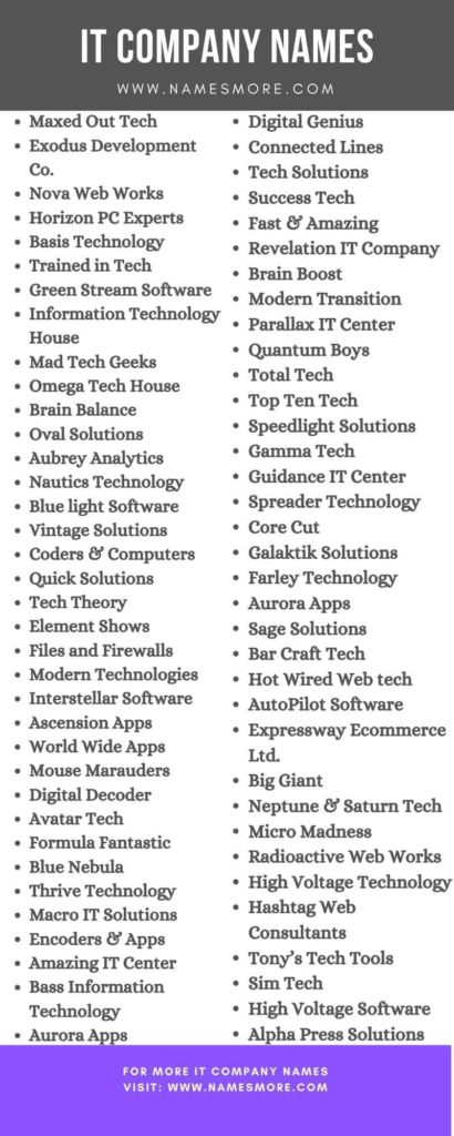 IT Company Names Infographic