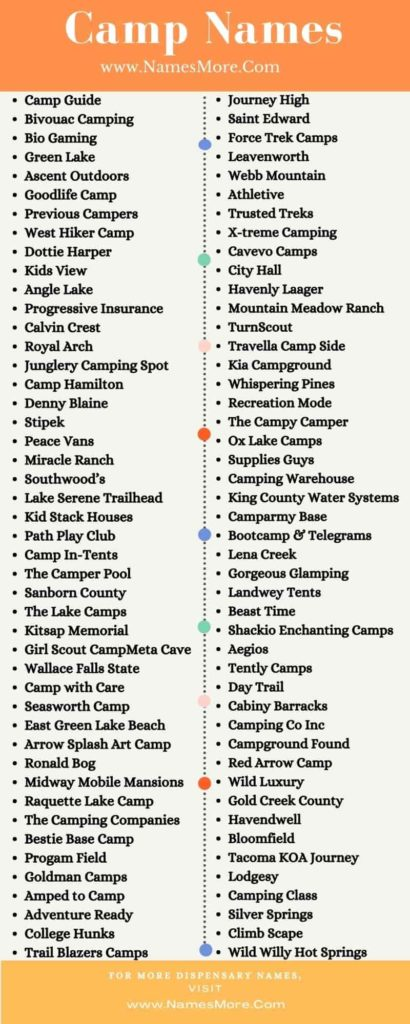 Camp Names Infographic