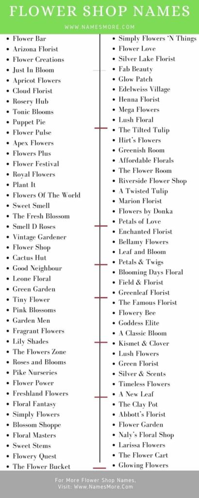 Flower Shop Names Infographic