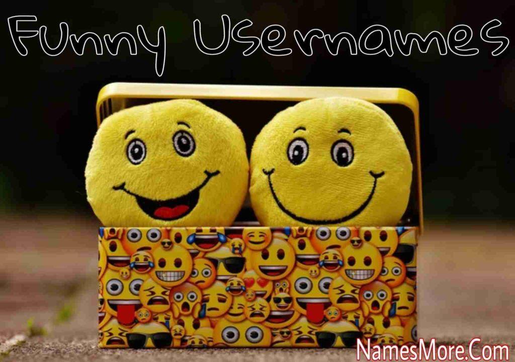 Funny Usernames